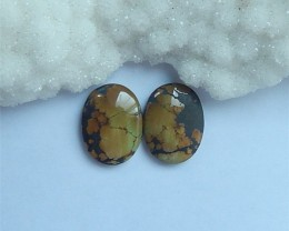 24.5ct Hot Sale Natural Turquoise Cabochon Pair(18052912)