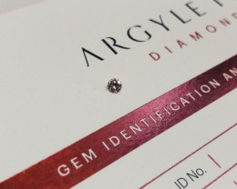 0.13CT 7PR SIAV Certified Argyle Pink Diamond