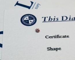 0.06ct 6P I1 Certified Argyle Pink Diamond