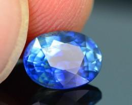 Top Grade 1.69  ct Bi Color Blue Sapphire SKU.10