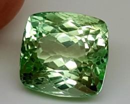 10.50  Cts SPODUMENE  Best Grade Gemstones JI 58