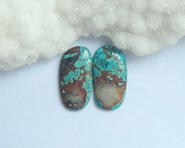 22ct On sale Natural Turquoise Cabochon Pair(18060408)