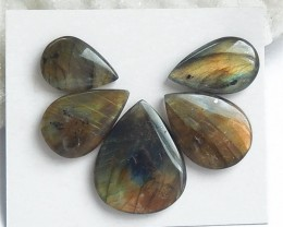 66ct 5Pcs Specialoffer Natural Water Drop Labradorite Cabochon (18060506)