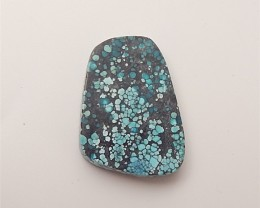 19.5ct Hot Sale Natural Turquoise Cabochon (18060522)