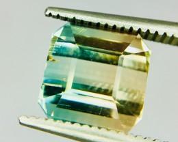 3.65 Crt Bi-Color Tourmaline Faceted Gemstone (R 192)