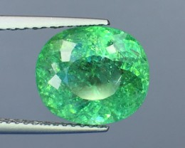 Certified 5.67 Cts Paraiba Tourmaline Attractive Higher Color ~ Mozambique
