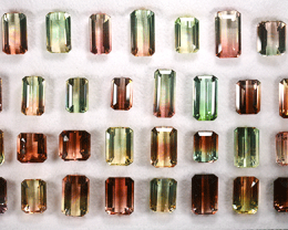 171.35 Cts Natural Fancy Color & Bi-Color Tourmaline Octagon 31 Pcs Par