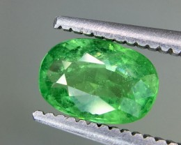 0.80 Crt Tsavorite  Faceted Gemstone (R 193)