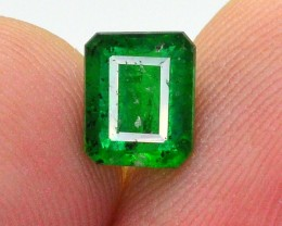 1.20 Ct Beautiful Color Natural Swat Emerald ~ IA