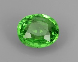 EXCELLENT NATURAL EARTH MINED RARE HUGE TOP GREEN TSAVORITE GARNET