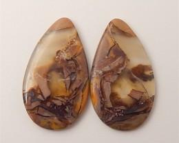 16ct Natural Water Drop Mushroom Jasper Cabochon Pair(18061307)