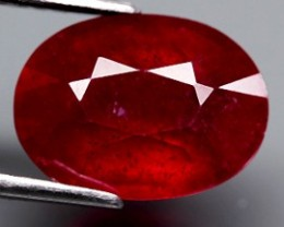 4.28 Cts . Blood Red Natural Ruby Mozambique Gem