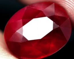 12.40 Cts. Top Quality Blood Red Natural Ruby Madagascar Gem