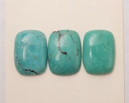11.5ct 3Pcs Hot Sale Natural Turquoise Cabochon (18061612)