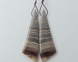 51ct New Arrival Natural Wood Fossil Earring Pair(18061912)