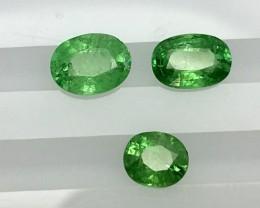 2.45 Crt Tsavorite Faceted Gemstone (R 196)