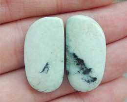 21ct Hot Sale Natural Turquoise Cabochon Pair(18062204)