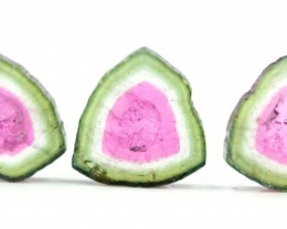 11.70 cts Super Quality Complete Watermelon Tourmaline Slices Lot