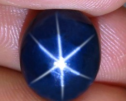 9.55 Carat Southeast Asian Blue Star Sapphire - Gorgeous