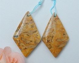64ct New Arrival Natural Coconut Fossil Earring Pair(18070310)