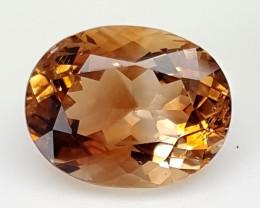 8.90Crt Topaz Of Pakistan Best Grade Gemstones JI71