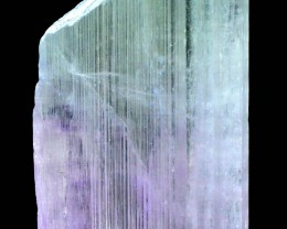 NO Reserve Terminated Natural Bi Color Kunzite Crystal
