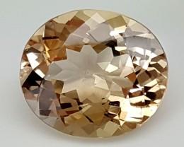 11.55Crt Topaz Best Cut Best Grade Gemstones JI72