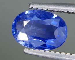 0.90 Crt Sapphire Faceted Gemstone (R 202)