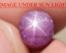 6.67 Ct Star Ruby CERTIFIED Beautiful Natural Unheated Untreated