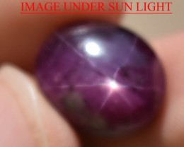 14.52 Ct Star Ruby CERTIFIED Beautiful Natural Unheated Untreated