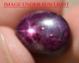 12.78 Ct Star Ruby CERTIFIED Beautiful Natural Unheated Untreated