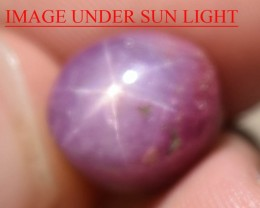 12.11 Ct Star Ruby CERTIFIED Beautiful Natural Unheated Untreated
