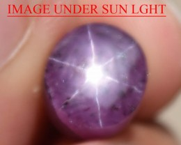 7.90 Ct Star Ruby CERTIFIED Beautiful Natural Unheated Untreated