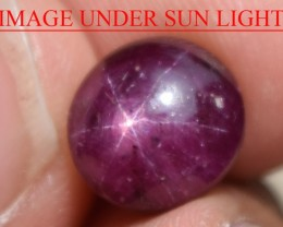 5.95 Ct Star Ruby CERTIFIED Beautiful Natural Unheated Untreated