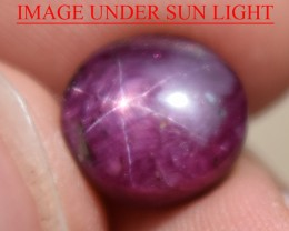 7.45 Ct Star Ruby CERTIFIED Beautiful Natural Unheated Untreated
