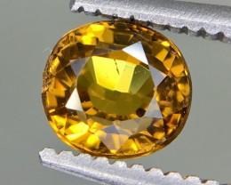 0.70 Crt Andradite Garnet Faceted Gemstone (R 203)