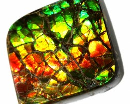 17.35 CTS AMMOLITE STONE FROM CANADA [SAFE108]