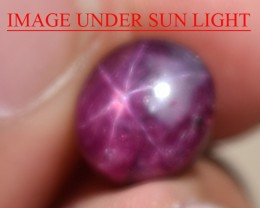 6.59 Ct Star Ruby CERTIFIED Beautiful Natural Unheated Untreated
