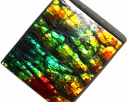 5.30 CTS AMMOLITE STONE FROM CANADA [SAFE115]