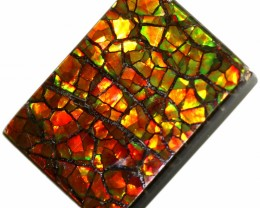 8.40 CTS AMMOLITE STONE FROM CANADA [SAFE116]