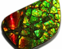 11.00 CTS AMMOLITE STONE FROM CANADA [SAFE117]