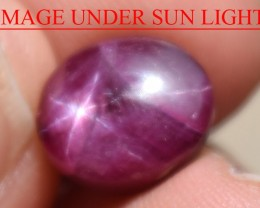 6.74 Ct Star Ruby CERTIFIED Beautiful Natural Unheated Untreated