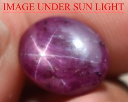 7.79 Ct Star Ruby CERTIFIED Beautiful Natural Unheated Untreated