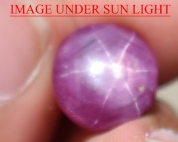 7.71 Ct Star Ruby CERTIFIED Beautiful Natural Unheated Untreated