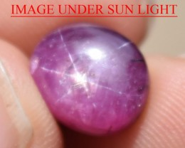 7.98 Ct Star Ruby CERTIFIED Beautiful Natural Unheated Untreated