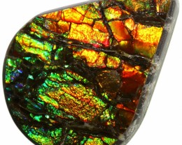 8.35 CTS AMMOLITE STONE FROM CANADA [SAFE121]