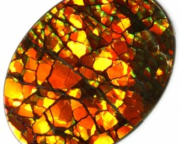 8.55 CTS AMMOLITE STONE FROM CANADA [SAFE123] NEON BRIGHT 2