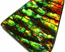 13.80 CTS AMMOLITE STONE FROM CANADA [SAFE125]
