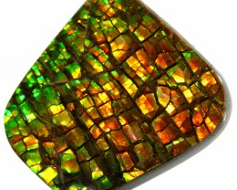 21.45 CTS AMMOLITE STONE FROM CANADA [SAFE136]