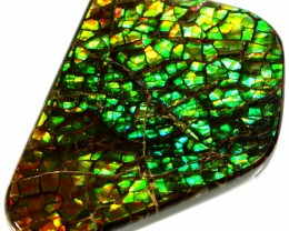 21.35 CTS AMMOLITE STONE FROM CANADA [SAFE138]